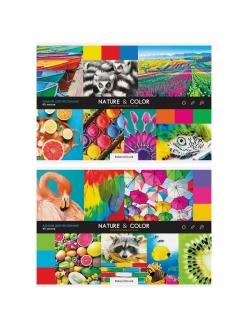 """Альбом для рисования А4, 40л. на скрепке """"Стиль. Nature and color"""" <А40_26234> """"ArtSpace"""" 280656"""